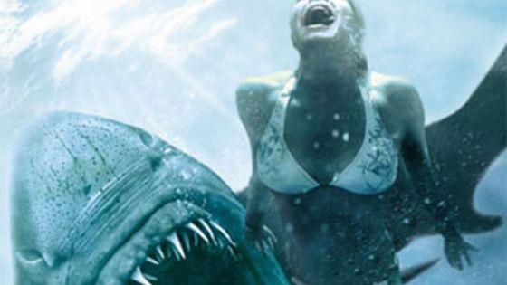 concurso-publicidad-tiburon_MDSIMA20111027_0382_4