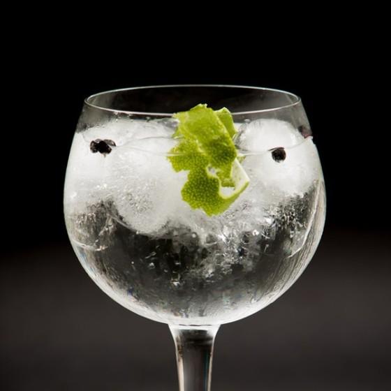 Cata-de-Gin-Tonic
